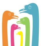 Imagen del vector de una cabeza de la avestruz Fotografía de archivo libre de regalías