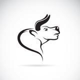 Imagen del vector de una cabeza del toro Imagen de archivo
