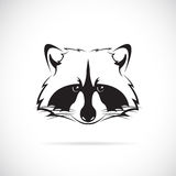 Imagen del vector de una cara del mapache Imagen de archivo libre de regalías