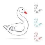 Imagen del vector del cisne Foto de archivo libre de regalías