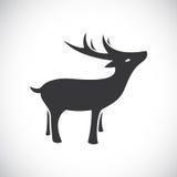 Imagen del vector del diseño de los ciervos Imagenes de archivo