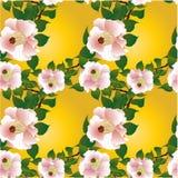Imagen del vector Flores - composición decorativa wallpaper Modelo inconsútil Foto de archivo