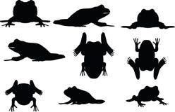 Imagen del vector - silueta de la rana en el fondo blanco Fotografía de archivo libre de regalías