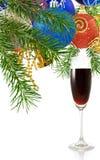 Imagen del vidrio de vino y de ramas Foto de archivo libre de regalías