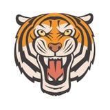 Imagen enojada del tigre Fotos de archivo