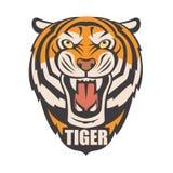 Imagen enojada del tigre Fotografía de archivo libre de regalías