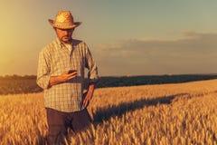 Imagen entonada retra del granjero del agrónomo que usa el teléfono móvil fotos de archivo