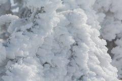 Imagen hermosa del invierno landscape Fotografía de archivo libre de regalías
