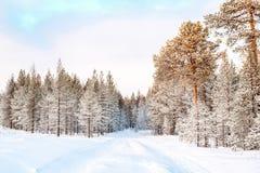 Imagen hermosa del invierno landscape Imagen de archivo