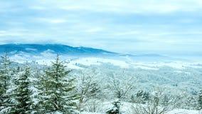 Imagen hermosa del invierno landscape almacen de metraje de vídeo