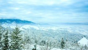 Imagen hermosa del invierno landscape almacen de video