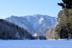 Imagen hermosa del invierno landscape Montañas y abedules siberia Khakassia Imágenes de archivo libres de regalías