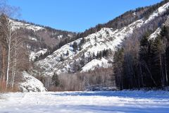 Imagen hermosa del invierno landscape Montañas y abedules siberia Khakassia Fotos de archivo