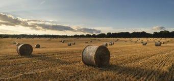 Imagen hermosa del paisaje del campo de las balas de heno en fie del verano Imagenes de archivo