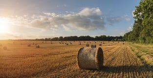 Imagen hermosa del paisaje del campo de las balas de heno en fie del verano Foto de archivo