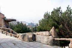 Imagen hermosa del parque Opinión del ojo de pájaro de edificios en la parte posterior imagen de archivo