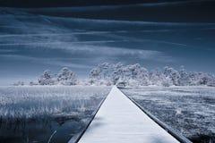 Tiro infrarrojo del camino sobre el agua Fotografía de archivo libre de regalías
