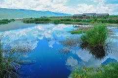 Imagen invertida del cielo en el lago de la hierba imagen de archivo