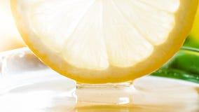 Imagen macra de sumergir la rebanada fresca del limón del corte en miel natural de la abeja Fotos de archivo
