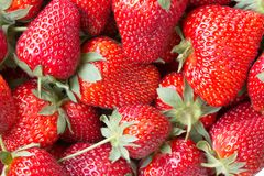 Imagen macra de una fresa madura jugosa Fotos de archivo