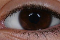 Imagen macra del ojo humano foto de archivo