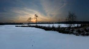 Imagen panorámica de la puesta del sol detrás de dos abedules al lado de una charca congelada en invierno Fotos de archivo libres de regalías