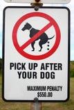 Imagen para arriba después del poste indicador del perro Foto de archivo libre de regalías