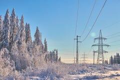Imagen pintoresca de la picea de la nieve Día frío, escena tranquila del invierno El concepto de turismo Feliz Año Nuevo rusa foto de archivo libre de regalías