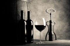 Imagen roja del estilo del tono de la crema de la degustación de vinos Fotos de archivo libres de regalías