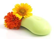 Imagen simple del jabón y de las flores Imagen de archivo libre de regalías