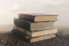 Imagen surrealista de libros gigantes encima de uno a que toca el cielo fotos de archivo