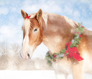 Imagen temática de la Navidad dulce de un caballo de bosquejo fotografía de archivo libre de regalías