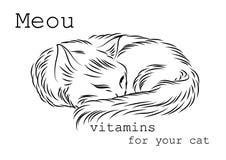 Imagen a utilizar en los paquetes, las cajas o las botellas de vitaminas para los gatos Foto de archivo libre de regalías