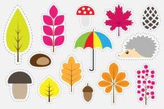 Imagens coloridas diferentes do outono para as crianças, jogo para crianças, atividade pré-escolar da educação do divertimento, g ilustração do vetor