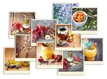 Imagens com uma variedade de especiarias e moedor diferentes da especiaria collage imagens de stock royalty free