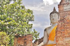 Imagens da Buda, Wat Yai Chai Mongkol, Ayutthaya, Tailândia Fotografia de Stock
