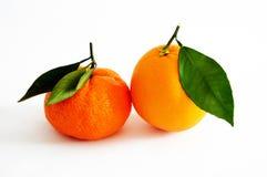 Imagens da laranja e do mandarino no fundo branco o mais bonito e melhor Fotos de Stock