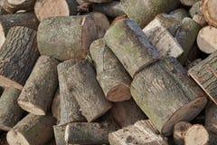 Imagens da textura de madeira foto de stock royalty free