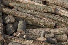 Imagens da textura de madeira fotos de stock royalty free