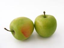Imagens das maçãs verdes apropriadas para o projeto de empacotamento Imagem de Stock Royalty Free