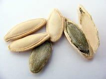 Imagens das sementes de abóbora apropriadas para o projeto do logotipo e de empacotamento Imagem de Stock Royalty Free