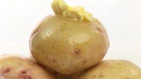 Imagens de vídeo conservadas em estoque das batatas video estoque