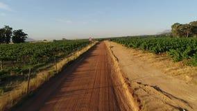 Imagens de vídeo da areia e da pastagem que fundem no vento na região de kalahari de África do Sul filme