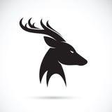 Imagens do vetor da cabeça dos cervos Fotos de Stock Royalty Free