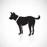 Imagens do vetor do cão Fotos de Stock Royalty Free