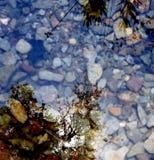 Imagens na água fotografia de stock