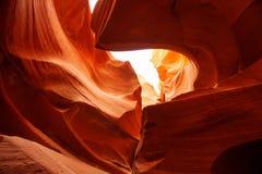 Imagens reais da garganta mais baixa do antílope no Arizona, EUA Fotos de Stock