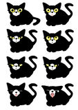 Images of black cat. Variations of expression of feeling. Stock Photos