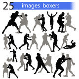 25 images boxers. 25 vector images boxers gray and black on a white background with letters on a blue background Stock Photo