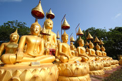 Images of buddha Stock Images